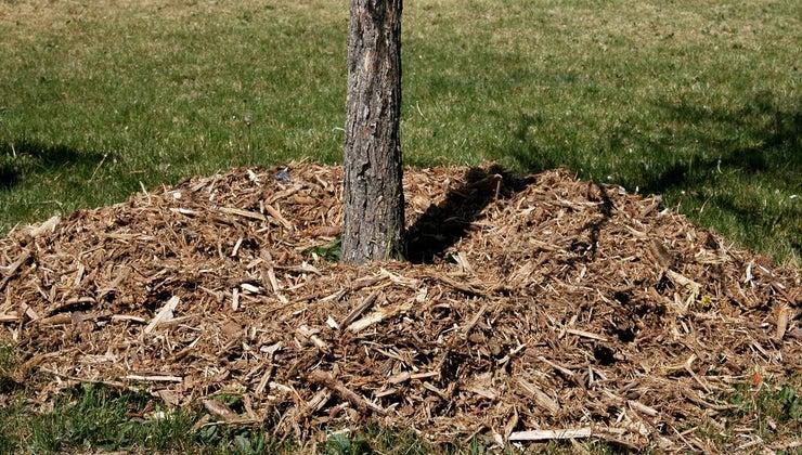 much-cubic-yard-mulch-weigh