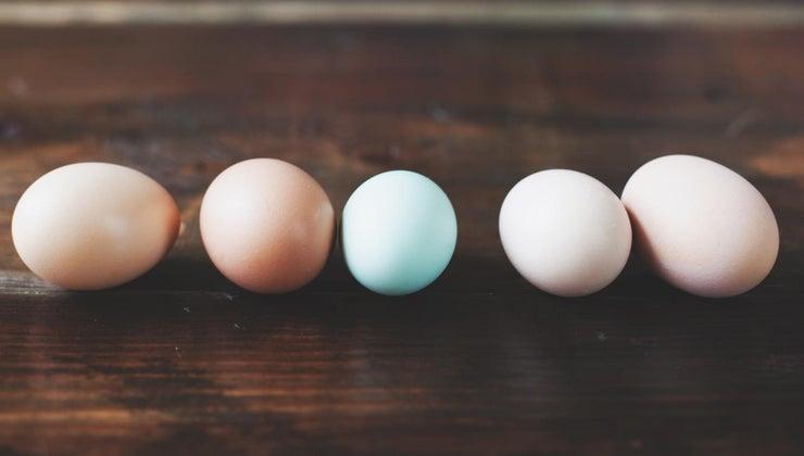 much-egg-weigh