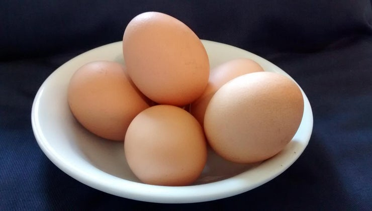 much-force-impact-can-egg-withstand