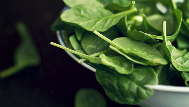 much-frozen-spinach-equals-fresh-spinach