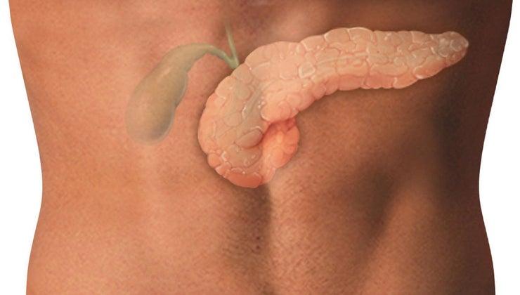 much-gallbladder-weigh