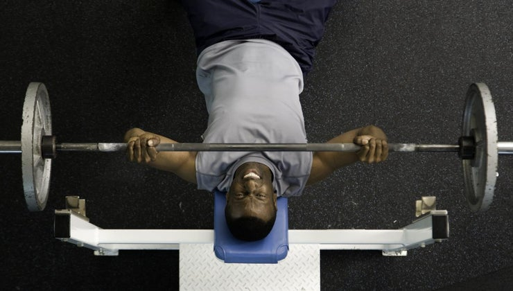 much-should-able-bench-press