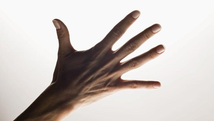 names-five-fingers-hand
