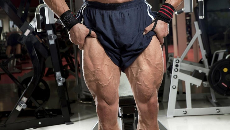 names-muscles-thigh