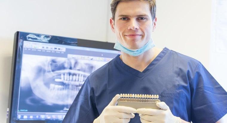 names-teeth-dental-chart