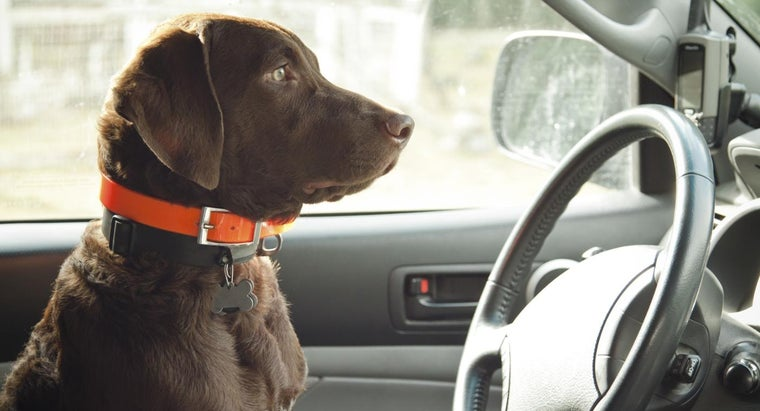 noise-turning-steering-wheel