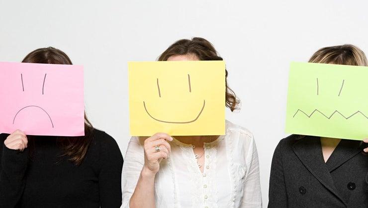 part-brain-controls-emotions