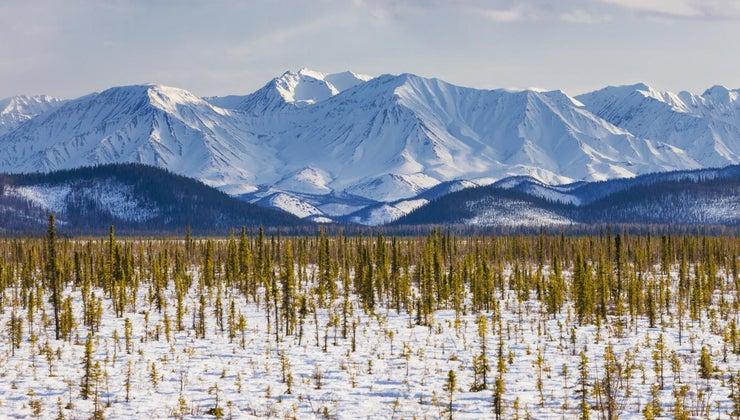 people-live-tundra