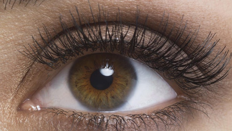 percentage-population-brown-eyes