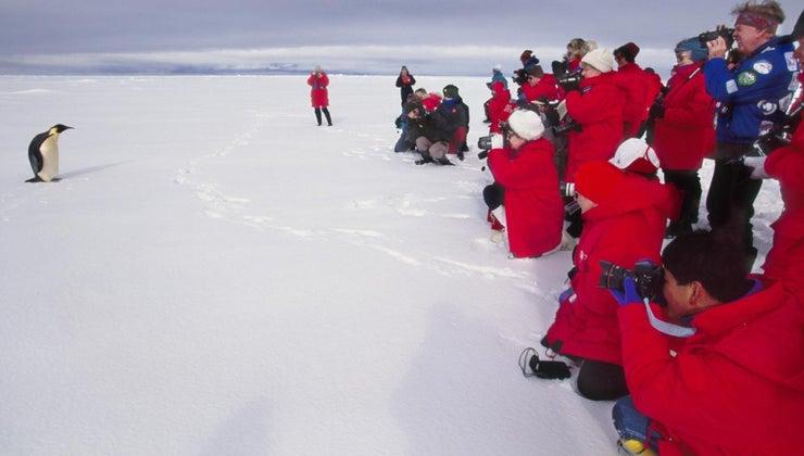 population-antarctica