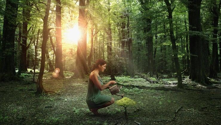 positive-human-impact-environment