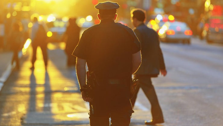 purpose-police