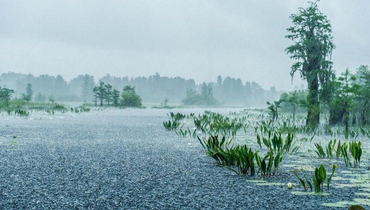 relationship-between-hurricanes-typhoons-tropical-cyclones