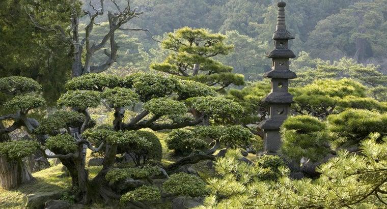 role-daimyo-feudal-japan