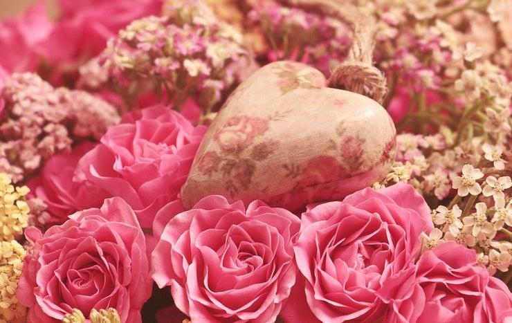 Roses 3699995 960 720