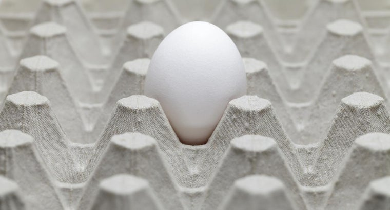 causes-rotten-egg-smell-house