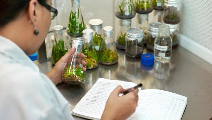 scientific-method-important