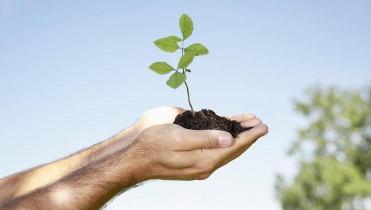 soil-conservation-important