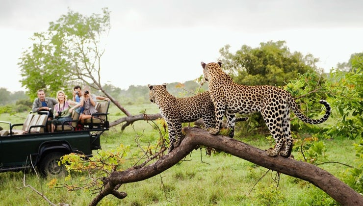 south-africa-famous