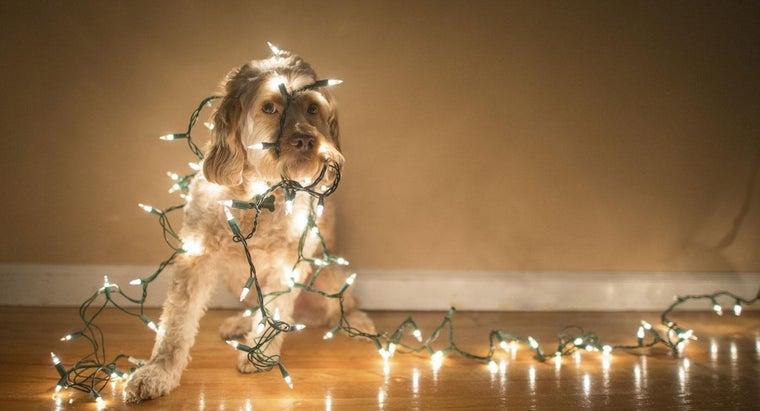 make-christmas-lights-twinkle