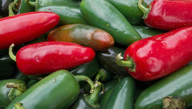 store-fresh-jalapeno-peppers