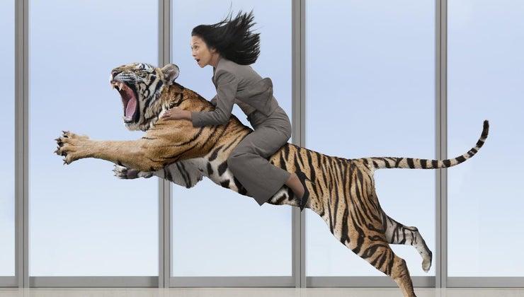 summary-lady-tiger
