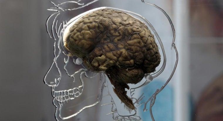 symptoms-brain-lesion