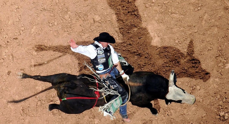 tall-average-pbr-bull-rider