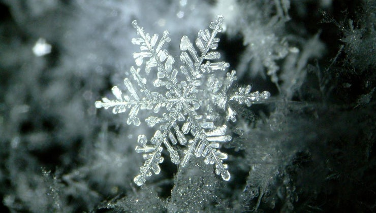 temperature-affect-density