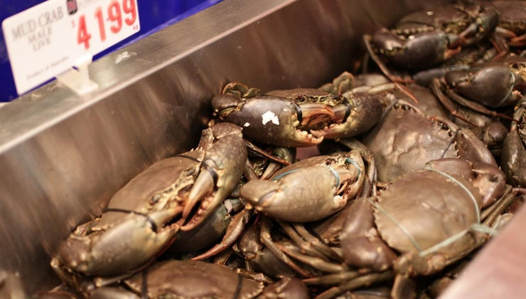 thaw-frozen-crab