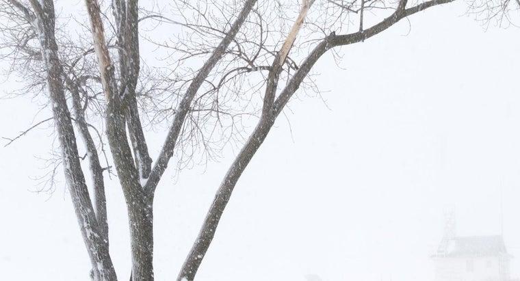 theme-snowstorm-ralph-waldo-emerson