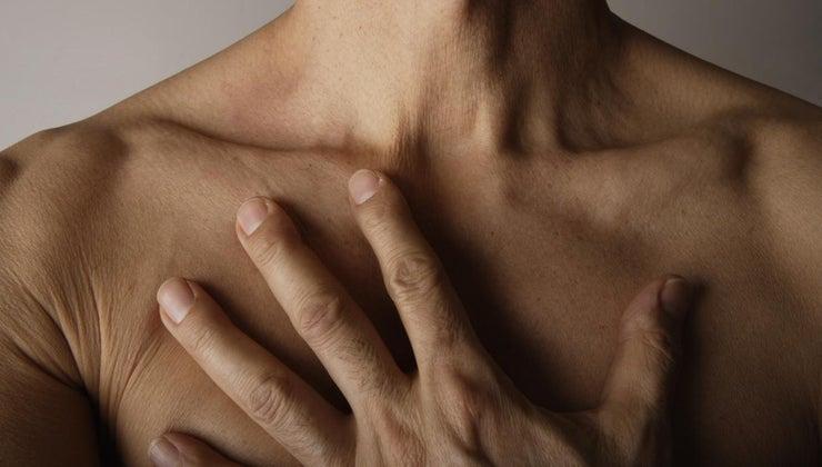 thorax-located-human-body