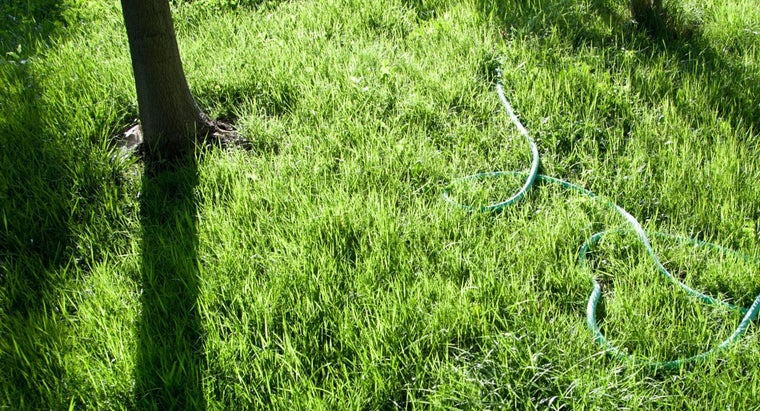 time-aerate-lawn
