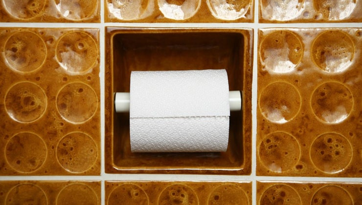 toilet-paper-septic-systems