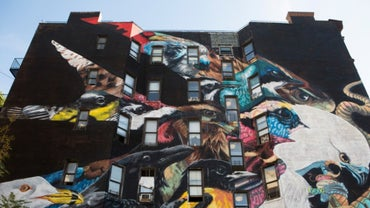 Scientists Work with NYC Artists to Create Murals Depicting Threatened Species