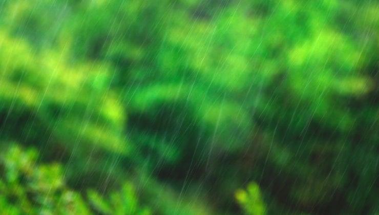 unit-used-measure-rainfall