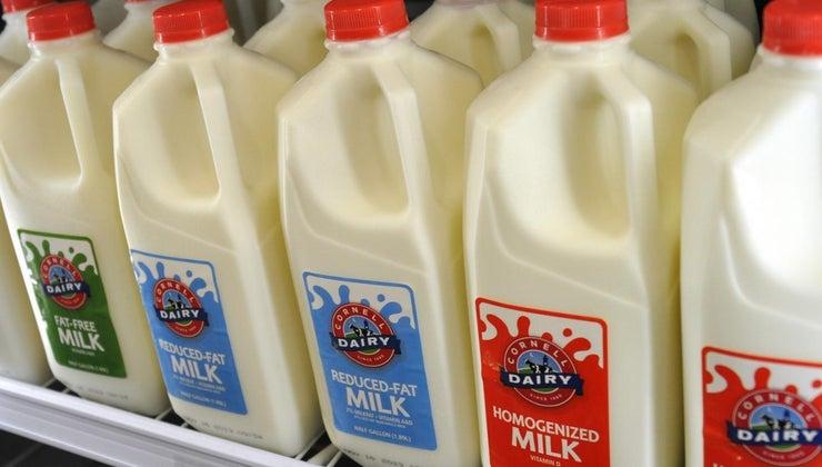 vitamin-palmitate-milk