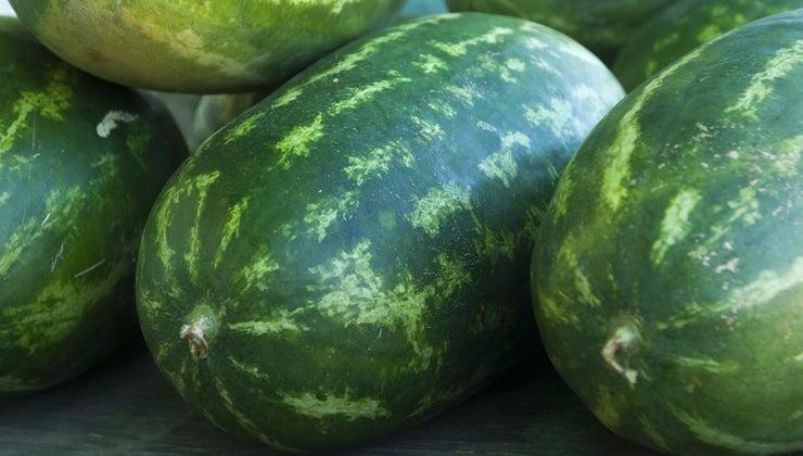 watermelon-grown-world