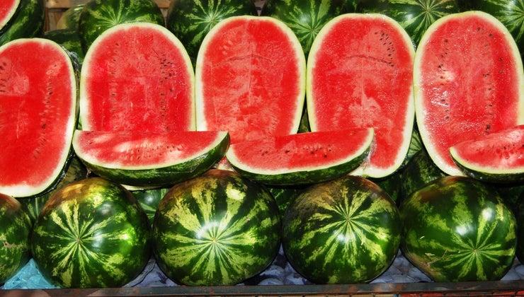 watermelon-season