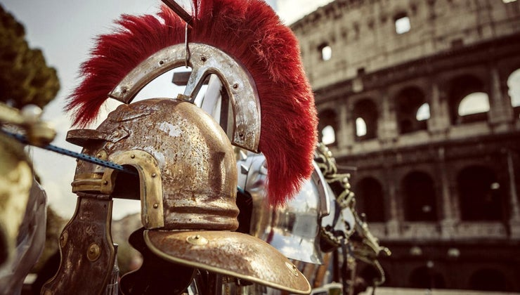 animals-did-gladiators-fight