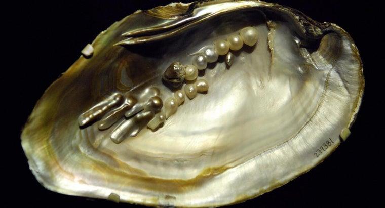 biwa-pearls