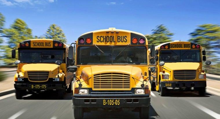 dimensions-school-bus