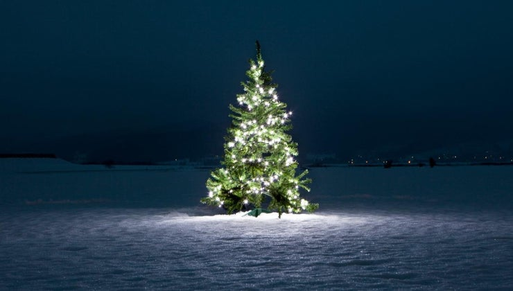 christmas-tree-symbolize