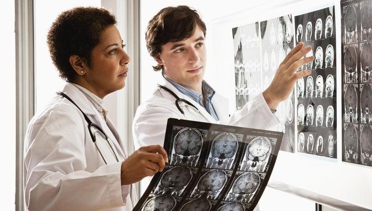 brain-important-human-body