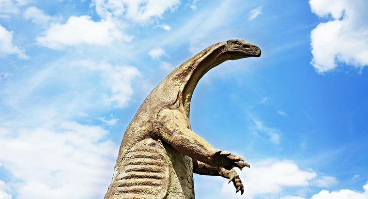 word-dinosaur-mean