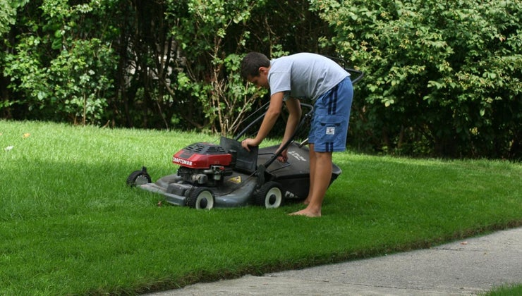 wrong-lawnmower