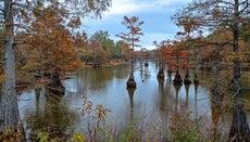 What Is the 100-Year Floodplain?