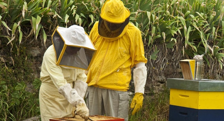 scientific-name-beekeeper