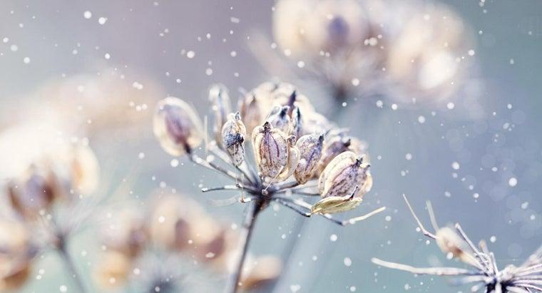 happens-winter