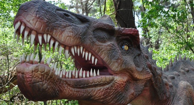 call-person-studies-dinosaurs